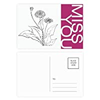 黒と白のタンポポの花の植物 ポストカードセットサンクスカード郵送側20個ミス