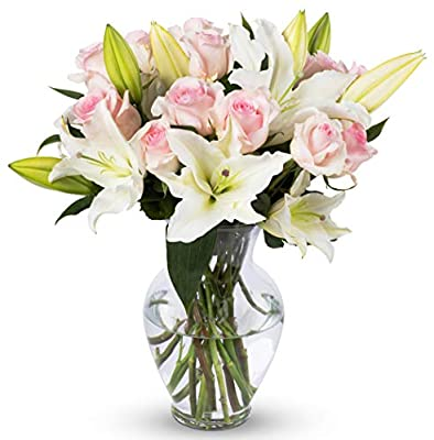 Benchmark Bouquets Light Pink Roses and White Oriental Lilies, With Vase (Fresh Cut Flowers) by Kendal Floral Supply Llc - Dropship