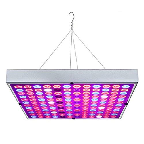 LED45W Full Spectrum Square Greenhouse Indoor Plant Supplement Light Spot, Succulent Flower 144 Lamp Beads, Enhance Dark Yellow Plant and Promote EU Growth