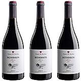 Hombros Mencía Vino Tinto  - 3 botellas x 750ml - total: 2250 ml