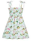 Baby Girls Flamingo Dress for Girls Flower Print Ruffles Dress Vintage Tropical Baby Outfit Party Dress 1T Vestidos De Flamenco para Niñas Girls Beach Dress Boho Sundress