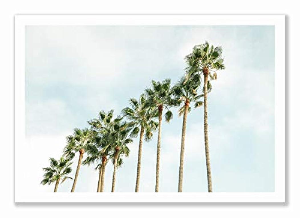 Palm Trees, Black Satin Aluminium Frame, with Mount, Multicolored, 40x60