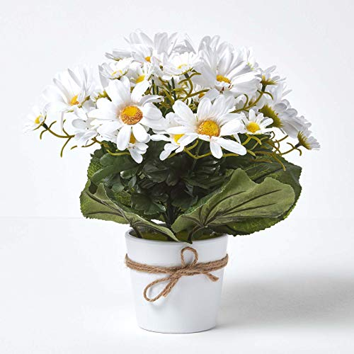 Homescapes White Daisy Flowers Artificial Daisy Plant in Glazed White Pot 31 cm for Indoor Decoration