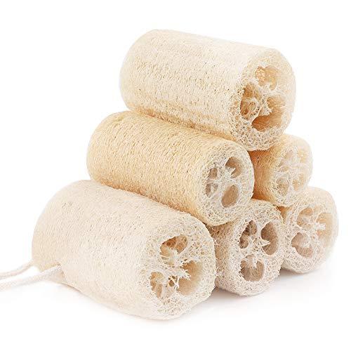 6 Stücke Natürliche Luffa, 10cm Naturschwamm Luffa Schwamm für die Körperpflege, Geschirrspühlen, putzen und duschen, perfekte Alternative zu Kunststoffschwämme (Primärfarbe)