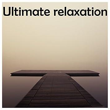 12 Meditation, Sleep and Yoga Sounds