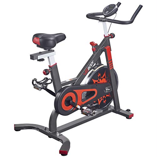 VIGBODY Exercise Bike Indoor Cycling Bicycle Stationary Bikes Cardio Workout Machine Upright Bike...
