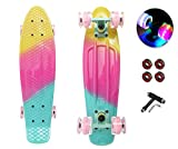 Mini Cruiser Skateboards for Beginners, Classic Skating Board 22 Inch for Kids 7-10, Funny Cool Skateboards with LED Light Up Wheels (Girl's Dream, 22')