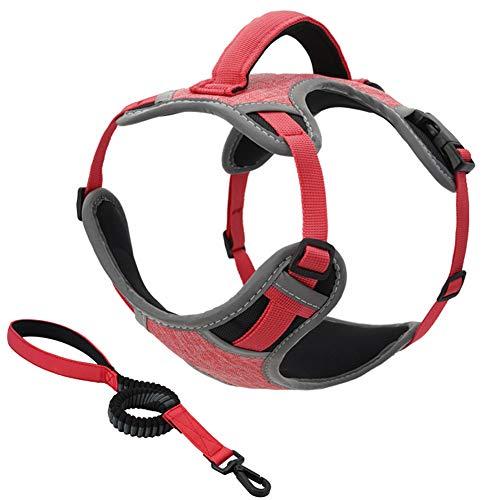 Front Range Hondentuig, Niet Trekken Verstelbaar Hondenvest Borstbanden Met Intrekbare Riem En Metalen Ring En Handvat Voor Training/Wandelen,Pink,M