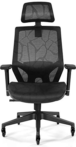 Tribesigns Ergonomic Office Chair, Mesh Computer Desk Chair with Adjustable Lumbar Support, 3D Armrest, Skate Wheels, Headrest - High Back Executive Task Chair for Office, Home, Gaming