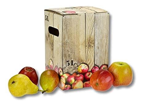 50 bolsas en caja de cartón – Elección de 5 litros y 10 litros – Bagin box para vino, zumo y mosto – Bolsas de zumo