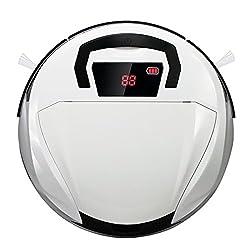 Evertop Roboter Staubsauger Version II Test