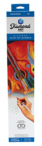 Diamond Art By Leisure Arts DMA Kit 14x16 Advanced Guitar