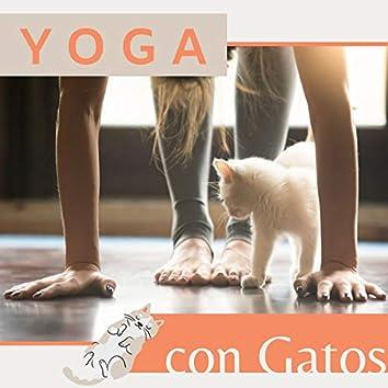 Yoga con Gatos: Música Relajante para Aliviar el Estrés en los Gatos y las Personas