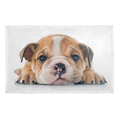 Manta para perro con impresión cálida, manta para cachorros, diseño de bulldog inglés