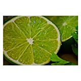 Cilantro Lime Seasoning Puzzles for Adults, 1000 Piece Kids Jigsaw Puzzles Game Toys Gift for Children Boys and Girls, 20' x 30'