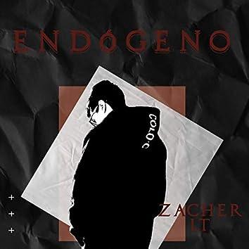 Endógeno (Estudio)