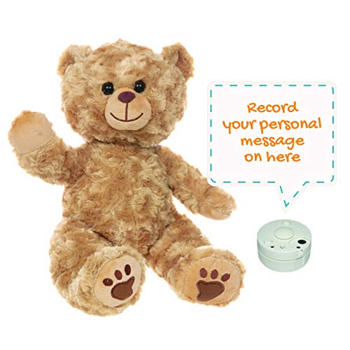 Recordable Teddy Bear - Barney Golden Bear 16' (40cm) Plush   Baby Heartbeat Bear Gift   Record a Personalized 10 Second Message   Cute Bag & Birth Certificate Included