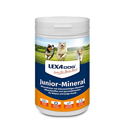 Lexa Dog® Junior Mineral 1 kg Dose