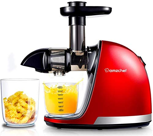 AMZCHEF Slow Juicer,Professional Cold Press Juicer Extractor Machine,Quiet Motor,...