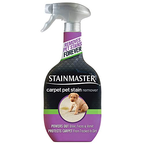 STAINMASTER Carpet Pet Stain & Odor Remover Cleaner, 22 Ounce