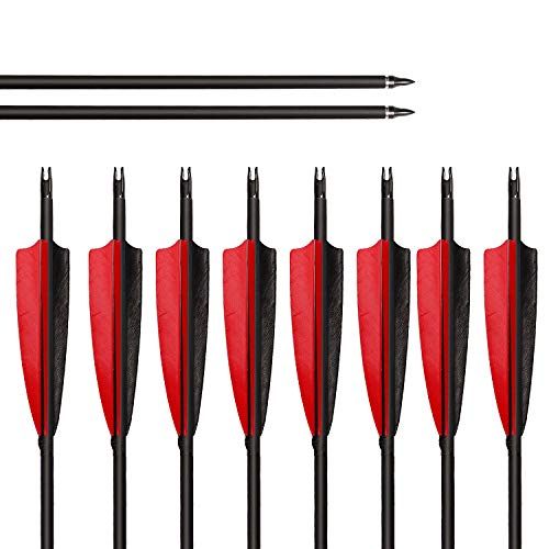 """ARCHERY SHARLY 31"""" Carbon Fiber Arrows Targeting Practice Arrows,5"""" Black & Red Natural Feather Fletching and Replacement Screw-in Tips for Recurve & Compound Bow,Traditional Long Bow (12 Pack)"""
