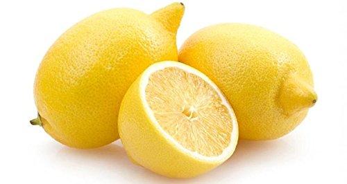 Bonsai Lemon Tree Seed 50 Pcs/paquet Citrus limon Graines Fruit Jardin Terrasse verger à graines Ferme Citron Potted semences pour jardin 1