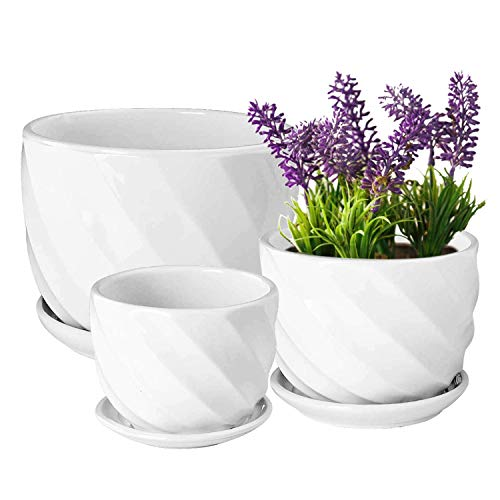 Yinger-WG Set of 3 Ceramic Plant...