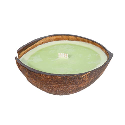 Coconut Lime Scented Candle in Coconut Shell   Clean Burning Soy & Coconut Wax   Tropical Beach Candle Handmade in Real Coconut   Novelty Candles for Home, 8.5oz