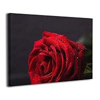 Skydoor J パネル ポスターフレーム 赤い バラ インテリア アートフレーム 額 モダン 壁掛けポスタ アート 壁アート 壁掛け絵画 装飾画 かべ飾り 30×40