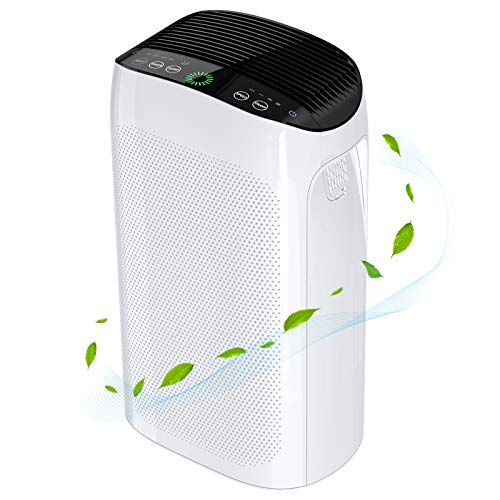Air Purifier for Home Large Rooms 495 ft², Air Choice True HEPA Filters Remove 99.97% of Smoke Pet Hair Dust, Smart Air Quality Detection, Air Cleaner for Allergies and Pet, 35dB Whisper Quiet, Timer
