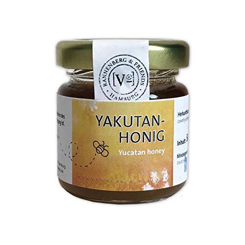 Exotisch Köstliche Honig Sorten im 50g Glas (Yucatan - Halbinsel Yucatai)
