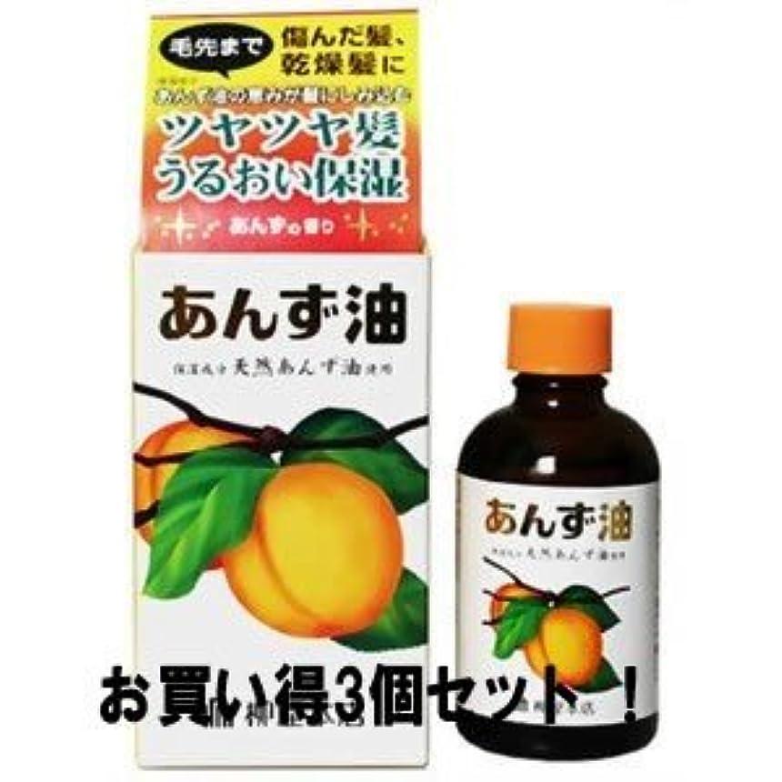 カヌーフレッシュ上級【柳屋本店】あんず油 60ml(お買い得3個セット)