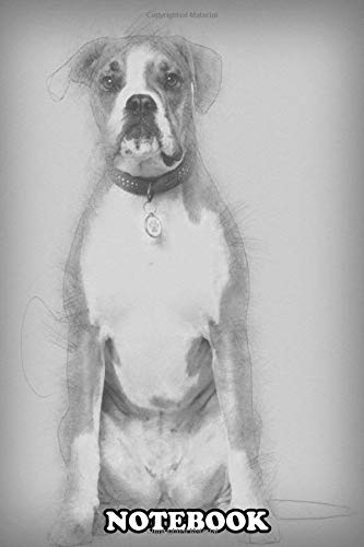 Notebook: Portrait Of Boxer 14 Years Old Sitting , Journal for Writing, College Ruled Size 6