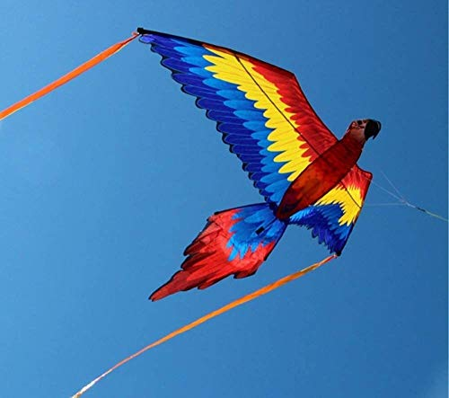 Decor Kites,Colorful parrot kite large bird single line to prevent tearing kite outdoor sports flying toy children gift easy to fly (Color : Kite and 400m spool)