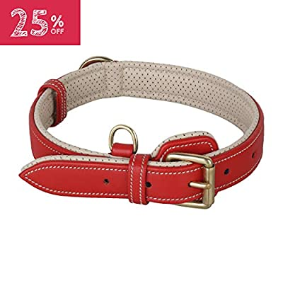 PawFurEver Leather Dog Collar with Soft Breathable Padding for Small Medium and Large Dogs (Large, Red)