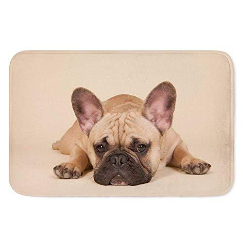 LVOE TTL Reisen Sie süße französische Bulldogge Print Fußmatten Männer Wohnzimmer Schlafzimmer Teppiche rutschfeste Boden ruhen Matte 15,7 X 23,5 Zoll