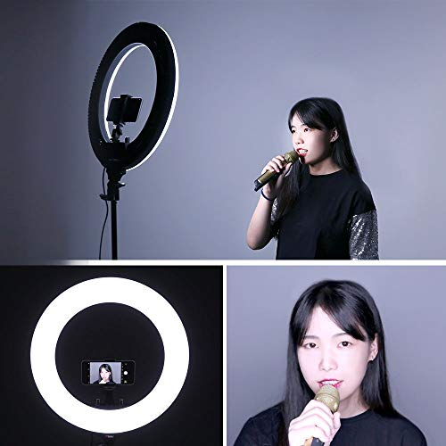 CRAPHY Photo Studio Camera Ring Light Kit,14
