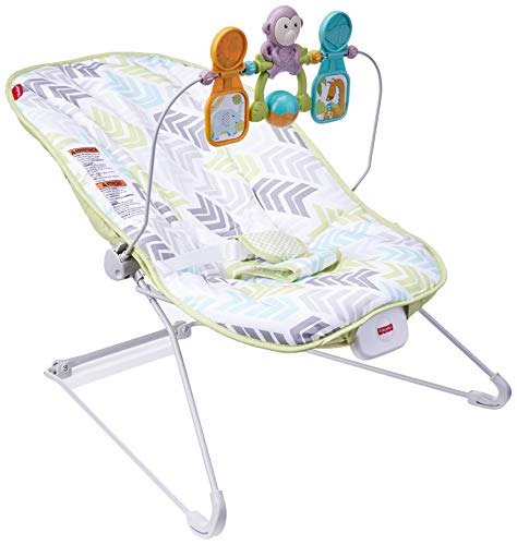 Fisher-Price Deluxe Bouncer: Green/Blue/Grey