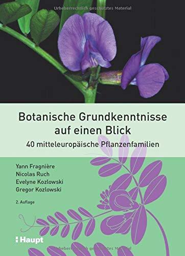 Botanische Grundkenntnisse auf einen Blick: 40 mitteleuropäische Pflanzenfamilien