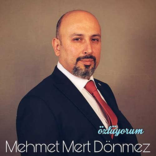 Mehmet Mert Dönmez
