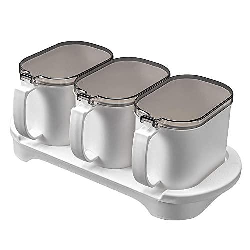 Ding&ng 3 Piezas de Conjunto de Casos de Sabor, Caja de plástico, Caja de plástico, Caja de Almacenamiento de condimento, Mermelada con Cubierta y Cuchara, Herramienta de Cocina