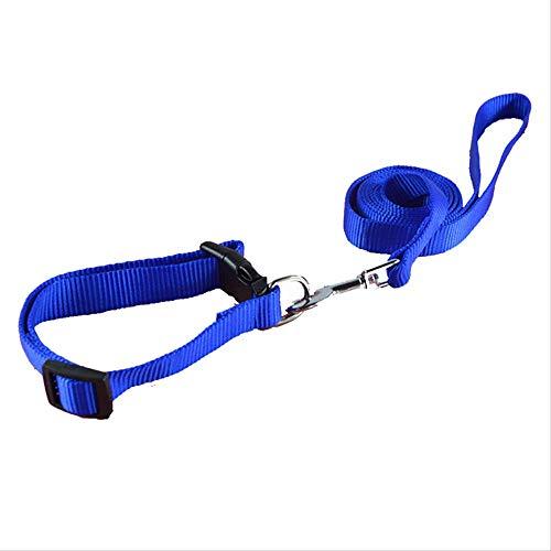 XYBB hondenriem voor honden, van nylon, eenkleurig, XS/S/S/S/S/L/L halsband voor kleine honden, M, Lichtblauw.
