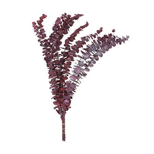 Amosfun 10pcs 30-45cm Hojas de eucalipto Artificial Tallos Hojas de eucalipto sembradas Artificiales Planta vegetación Verde Vacaciones Verdes de la Boda Verde (Rojo)