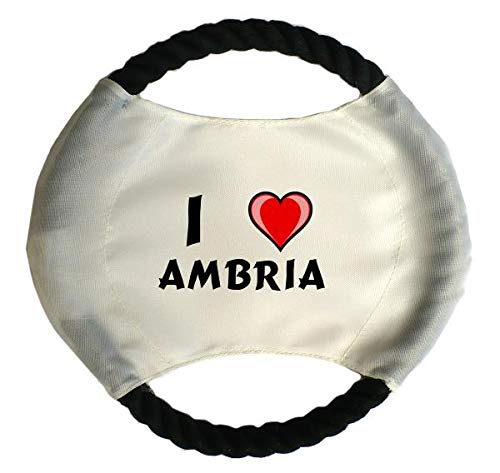 Personalisierter Hundefrisbee mit Aufschrift Ich liebe Ambria (Vorname/Zuname/Spitzname)