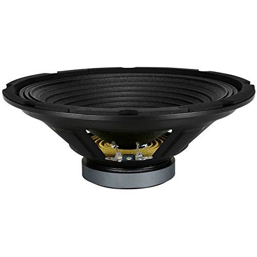 """PYRAMID WH10 Altavoz difusor woofer de 25,00 cm 250 mm 10"""" de 150 Watt rms y 300 Watt MAX con impedancia 8 Ohm casa DJ Fiestas Party Karaoke, 1 Pieza"""