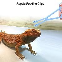 【𝐍𝐞𝒘 𝐘𝐞𝐚𝐫𝐬 𝐆𝐢𝐟𝐭𝐬】給餌ツール、爬虫類給餌クリップ、クリップピンセットテラリウムトカゲ爬虫類トカゲカメのペット