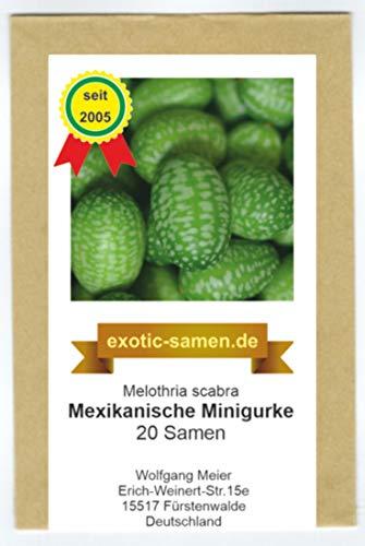 Mexikanische Minigurke - Melothria scabra - sehr ertragreich - 20 Samen