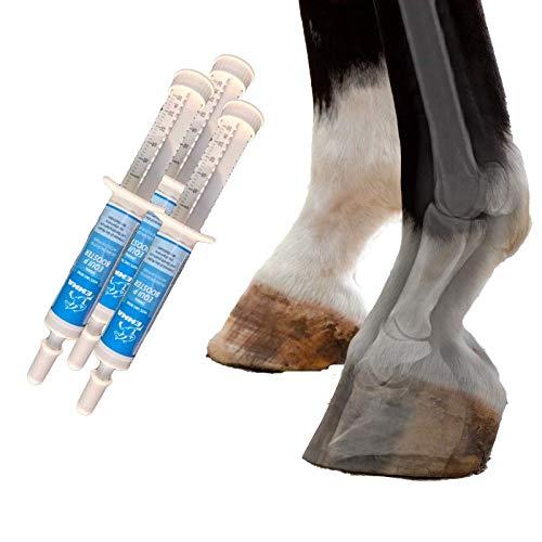 MSM Pferd I Equi P Booster I Gelenk-Paste Plus Glucosamin Chondroitin Weidenrinde I Vitamin C Bierhefe I Bewegungsapparat Gelenke Sehnen Bänder Knorpel I Agilität für Senioren Pferde 3St