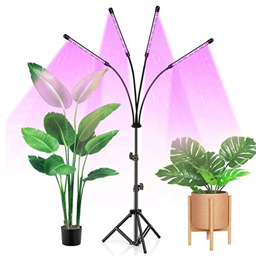 WRQ Grow Lights,Plant Growth Light with Stand,40W 4 Head 80 LED 10 Dimmable Levels Plant Grow Lights with Red Blue Spectrum 4/8/12H Timer Adjustable Gooseneck for Indoor Plants
