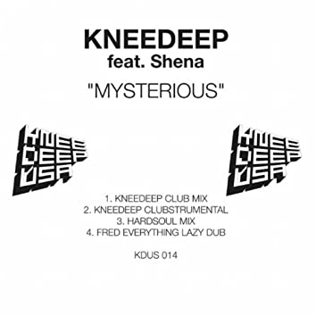 Mysterious (feat. Shena)